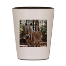 Sweet Haflinger Shot Glass