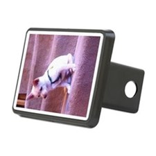 Rat dog Hitch Cover