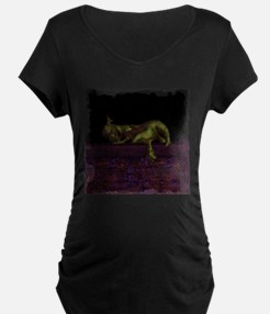 Let sleeping dragons lie Maternity T-Shirt