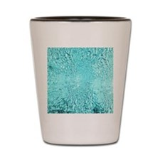 Water World Shot Glass