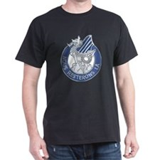 DUI - 3rd Infantry Division T-Shirt