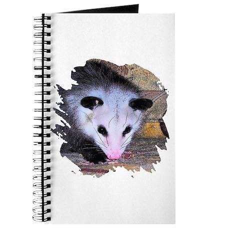Virginia Opossum Journal