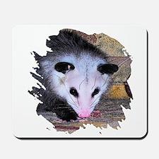 Virginia Opossum Mousepad