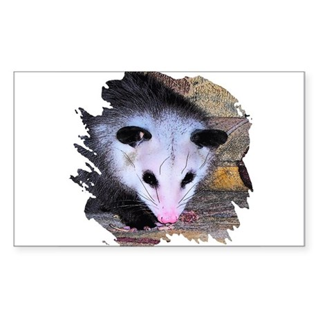 Virginia Opossum Rectangle Sticker