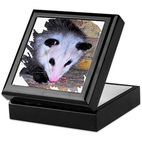 Virginia Opossum Keepsake Box