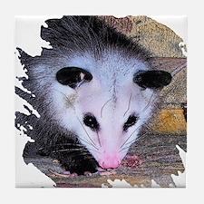 Virginia Opossum Tile Coaster