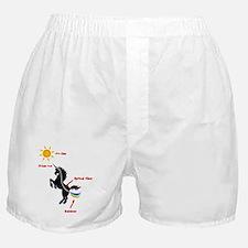 Scientific Explanation Boxer Shorts