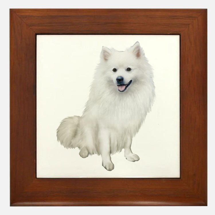 American Eskmio Dog Framed Tile