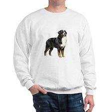 Bernese MD (stand) Sweatshirt