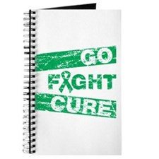 Liver Cancer Go Fight Cure Journal