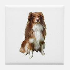 Australian Shep (tri) #2 Tile Coaster