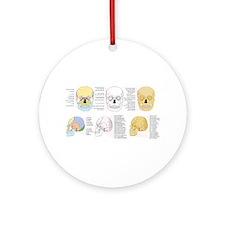 doctor skull Ornament (Round)