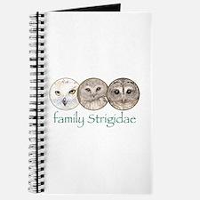 OWLS art, family Strigidae Journal