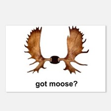 got moose? Postcards (Package of 8)