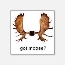 got moose? Sticker