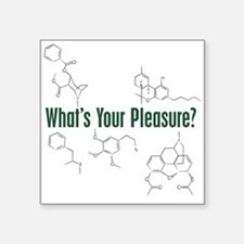"Your Pleasure Square Sticker 3"" x 3"""