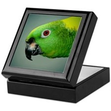 Amazon Parrot Keepsake Box