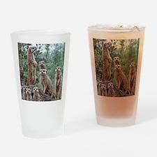 Meerkat010 Drinking Glass