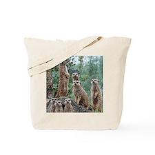 Meerkat010 Tote Bag