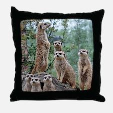 Meerkat010 Throw Pillow