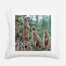 Meerkat010 Square Canvas Pillow