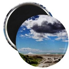 Beautiful New Zealand – Beach Track Magnet