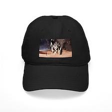 Can't Eat Money Baseball Hat