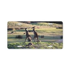 Boxing Kangaroo's Aluminum License Plate