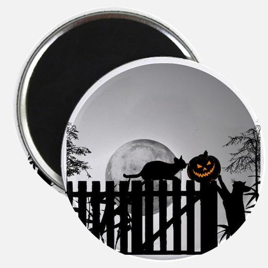 Pumpkin, Cats, Moon and Shadows Magnet
