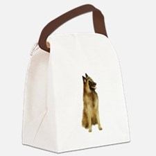 * * * * * Canvas Lunch Bag