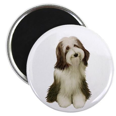 Bearded Collie (V) Magnet