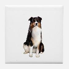 Aussie Shep (Tri3) Tile Coaster