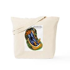 Elizabeth's Chromodoris Tote Bag