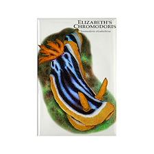 Elizabeth's Chromodoris Rectangle Magnet