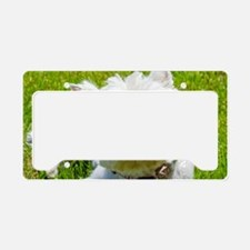 Biene License Plate Holder