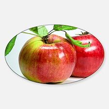 Red Apple Sticker (Oval)