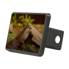 Fischotter Hitch Cover