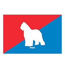 Briard Diagonal Postcards (Package of 8)