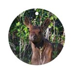 BABY MOOSE Ornament (Round)