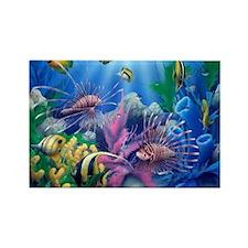 Ocean Life Magnets