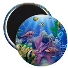 Ocean Life Magnets
