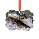 Smile For Me - Sammy Snake Ornament