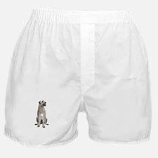 Irish Wolfhound (sit) Boxer Shorts