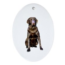 Labrador (Choc2) Ornament (Oval)