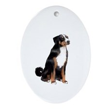 Appenzeller Mt Dog Ornament (Oval)