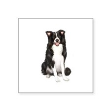 "Border Collie #1 Square Sticker 3"" x 3"""