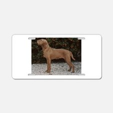 wirehaired vizsla Aluminum License Plate