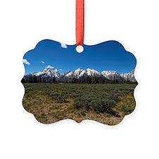Grand Teton Scenic View Ornament