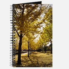 Golden ginkgo Journal