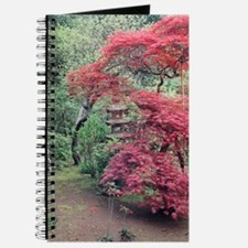 Red maples ishidoro Journal